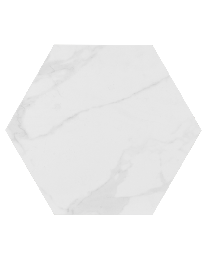 Finsbury Hex Marble Wall and Floor 172X172