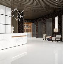 Space White Glazed Porcelain W&F 300x600mm