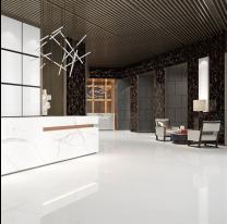 Space White Glazed Porcelain W&F 600x600mm