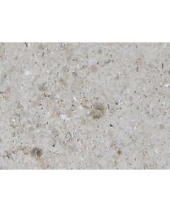 Marshalls Tile and Stone Moleanos Mix Tile 400x400mm