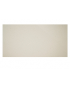 Modern Ivory (White) Polished wall and floor Tile - 600x300mm
