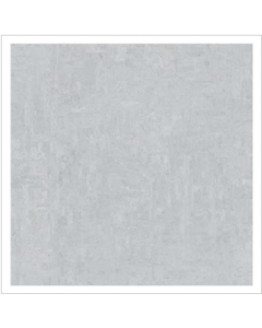 Gemini Franklin Zinc Matt Tile - 495x495mm